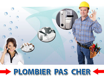 Curage Fosses Septiques Limours 91470