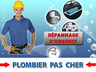 Curage Fosses Septiques Poissy 78300